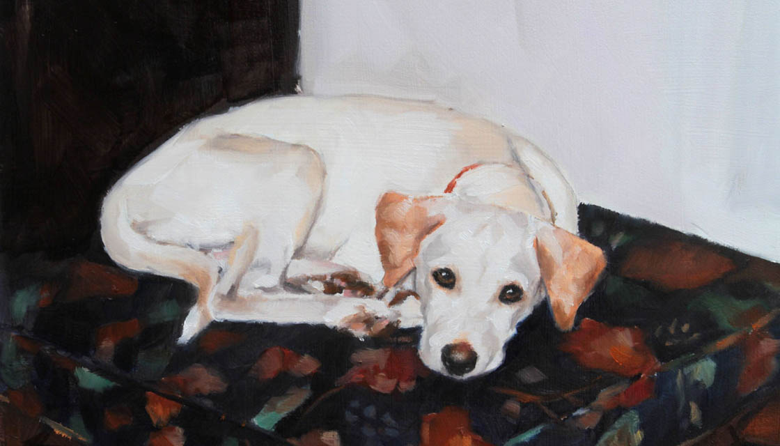 Paint My Dog 3