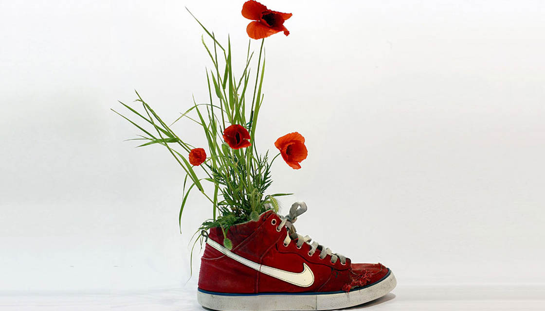 nike-sneaker-flowers-just-grow-it-mr-plant-03
