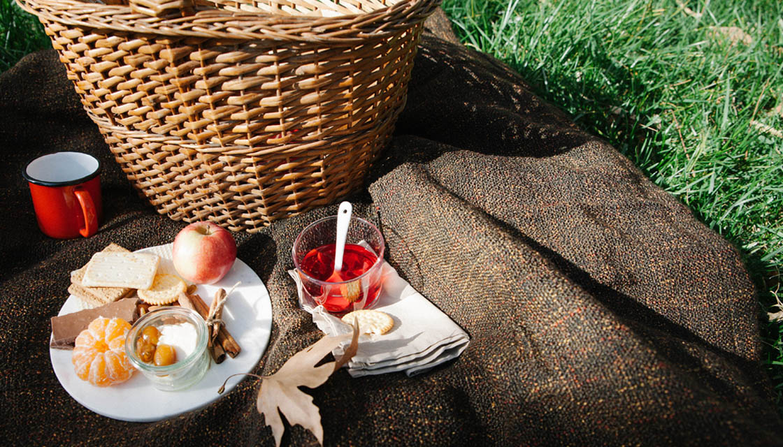 Piknik istanbul 4