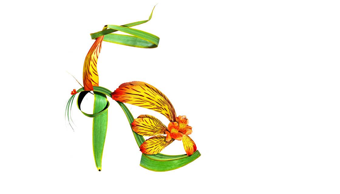 Shoe Fleur 9