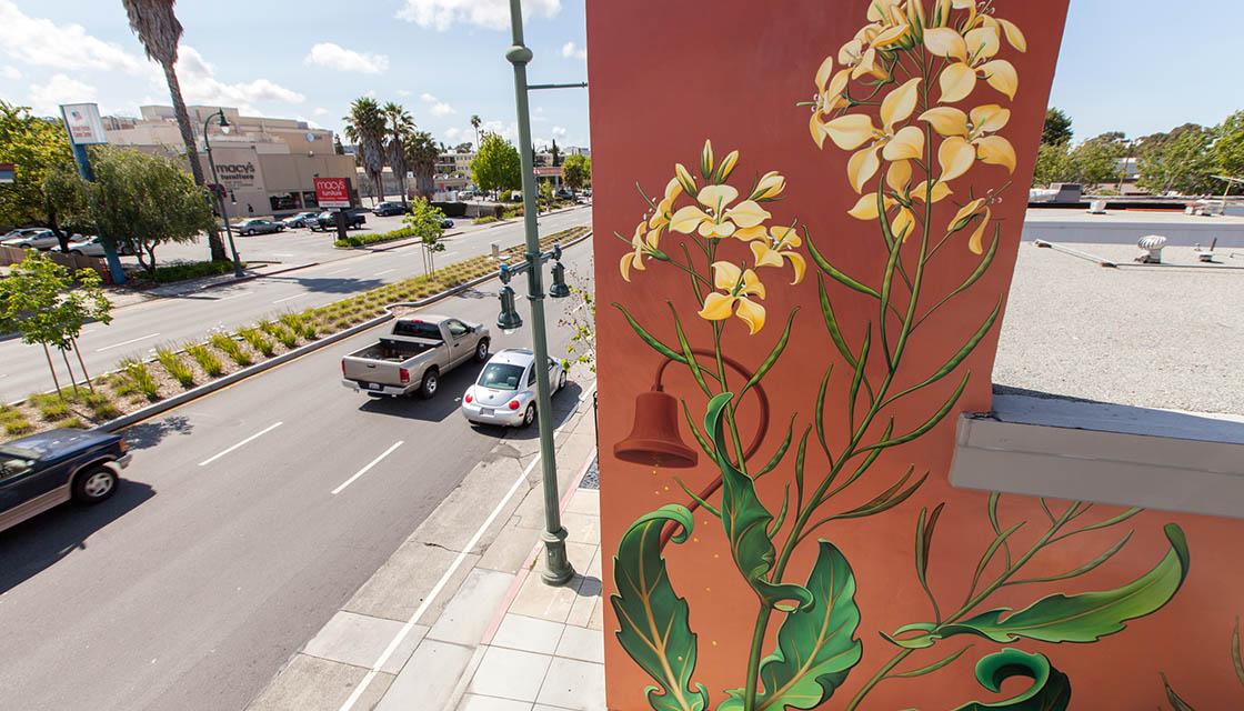 Weed Murals 5